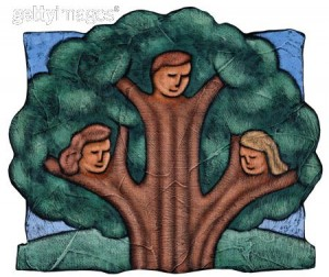 making the family tree book good parenting